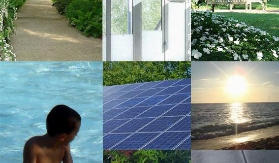 الاستدامة البيئ&# ..