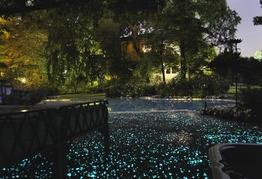 Pavimenti fluo per giardini - Paghera