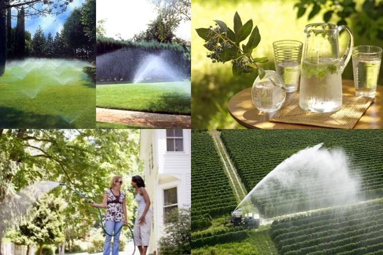 Environment - Oxygen Ozone Technology