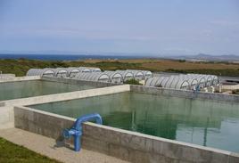 Очистные сооружения в г. Стинтино, в Сардинии - Очистные сооружения