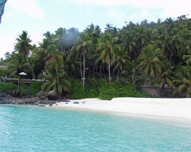 Сейшельские острова, Северо-Восточный мыс - САДЫ