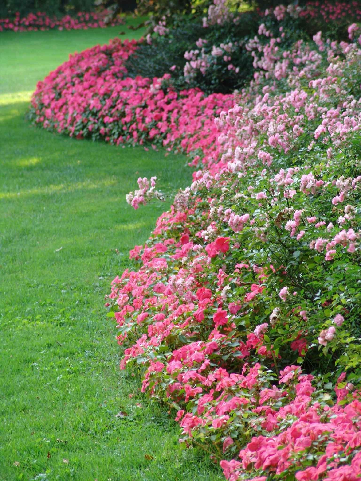 Country Park - Gardens