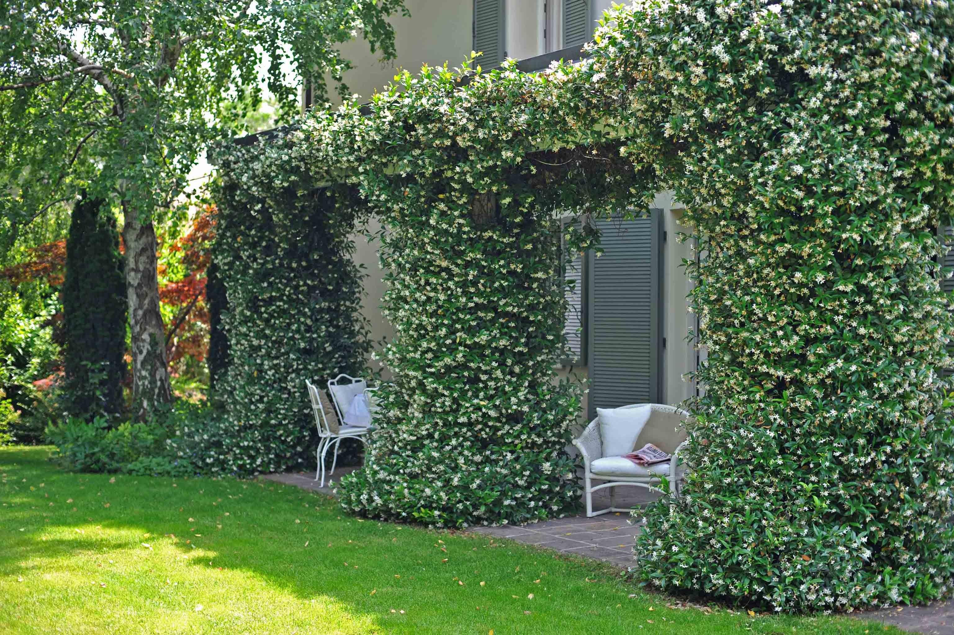 Giardini paghera dettagli di un piccolo giardino - Piccolo giardino ...