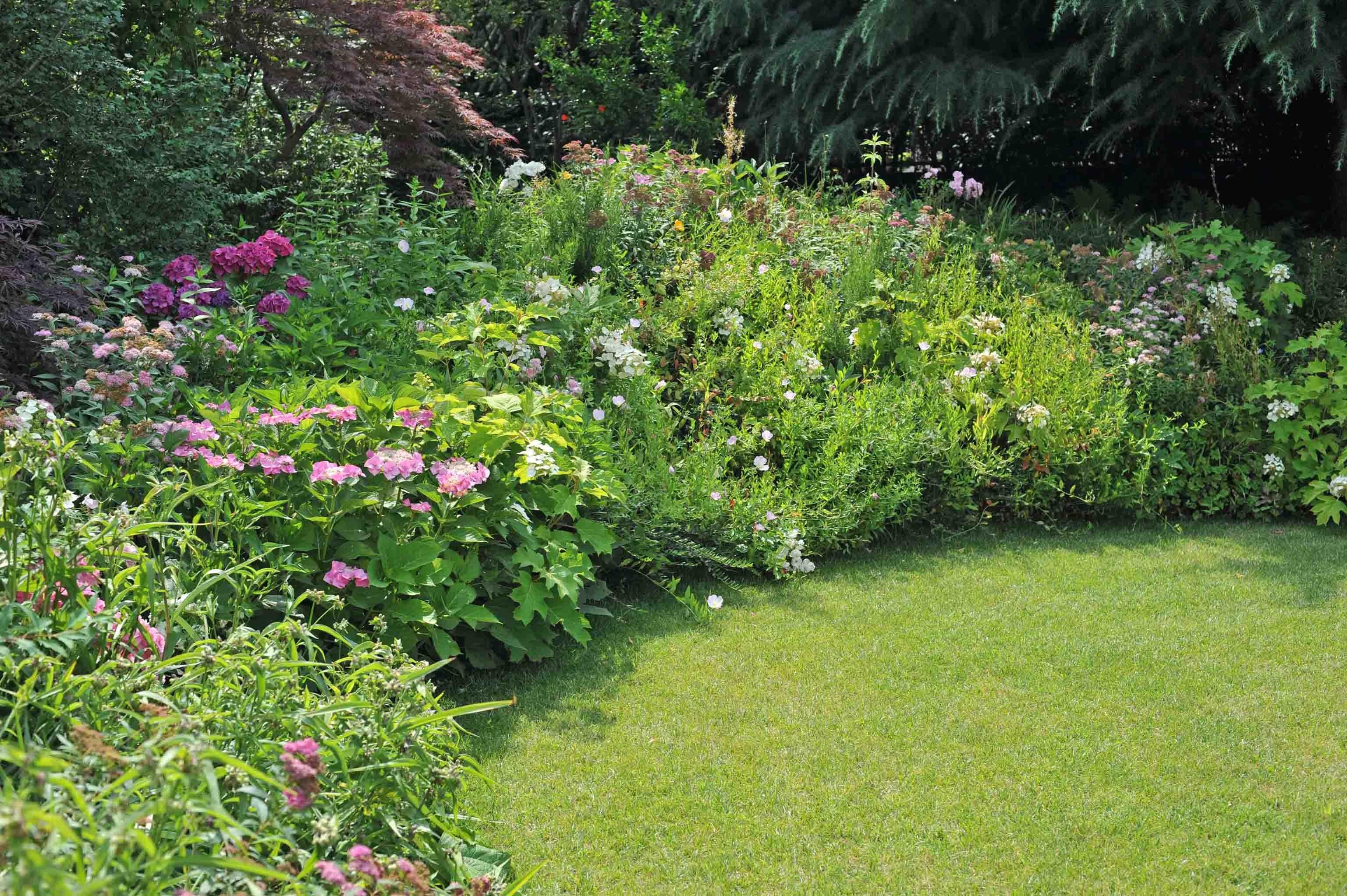 Dettagli di un piccolo giardino - Giardini