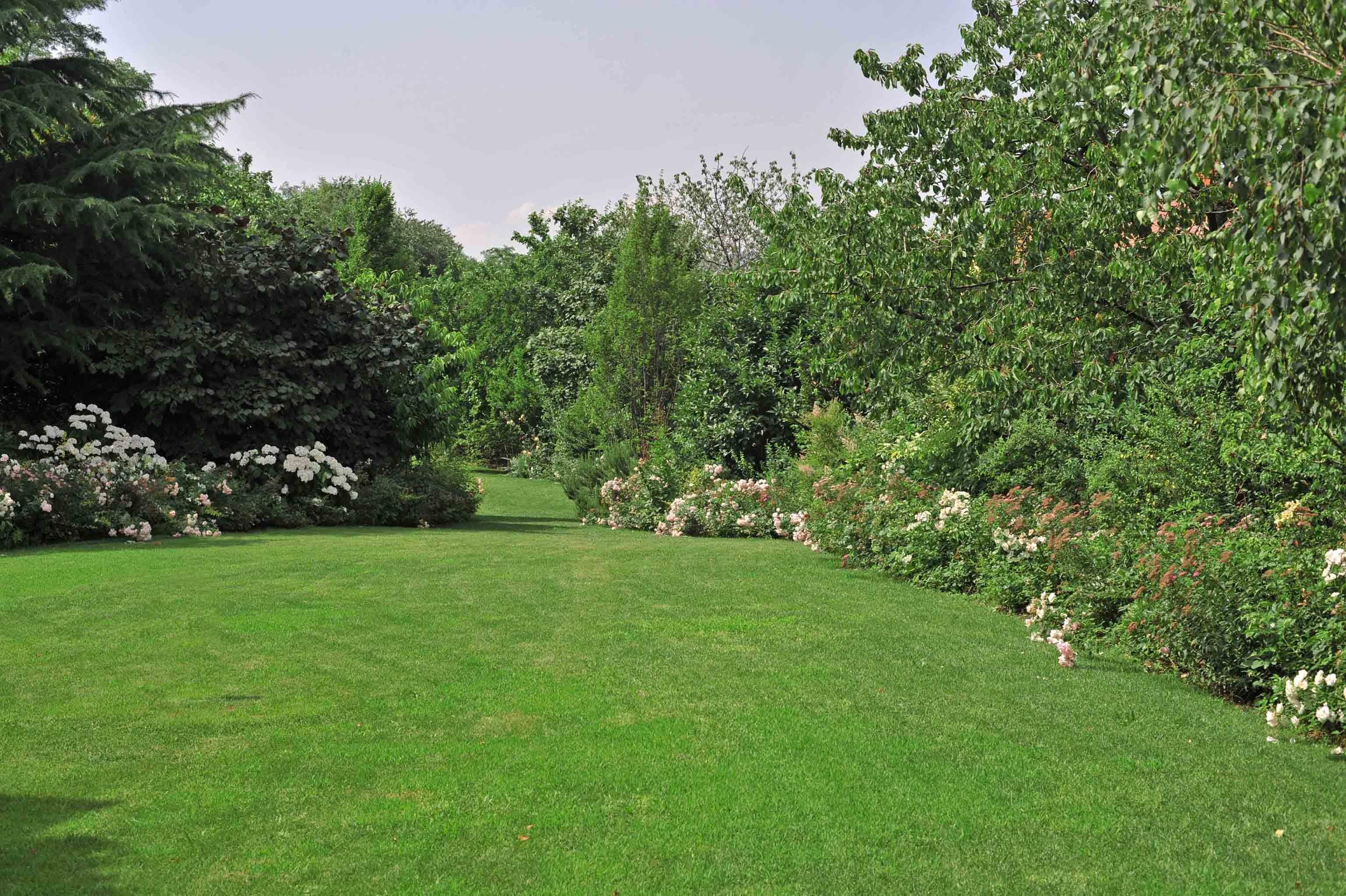 تفاصيل الحديقة الصغيرة - الحدائق