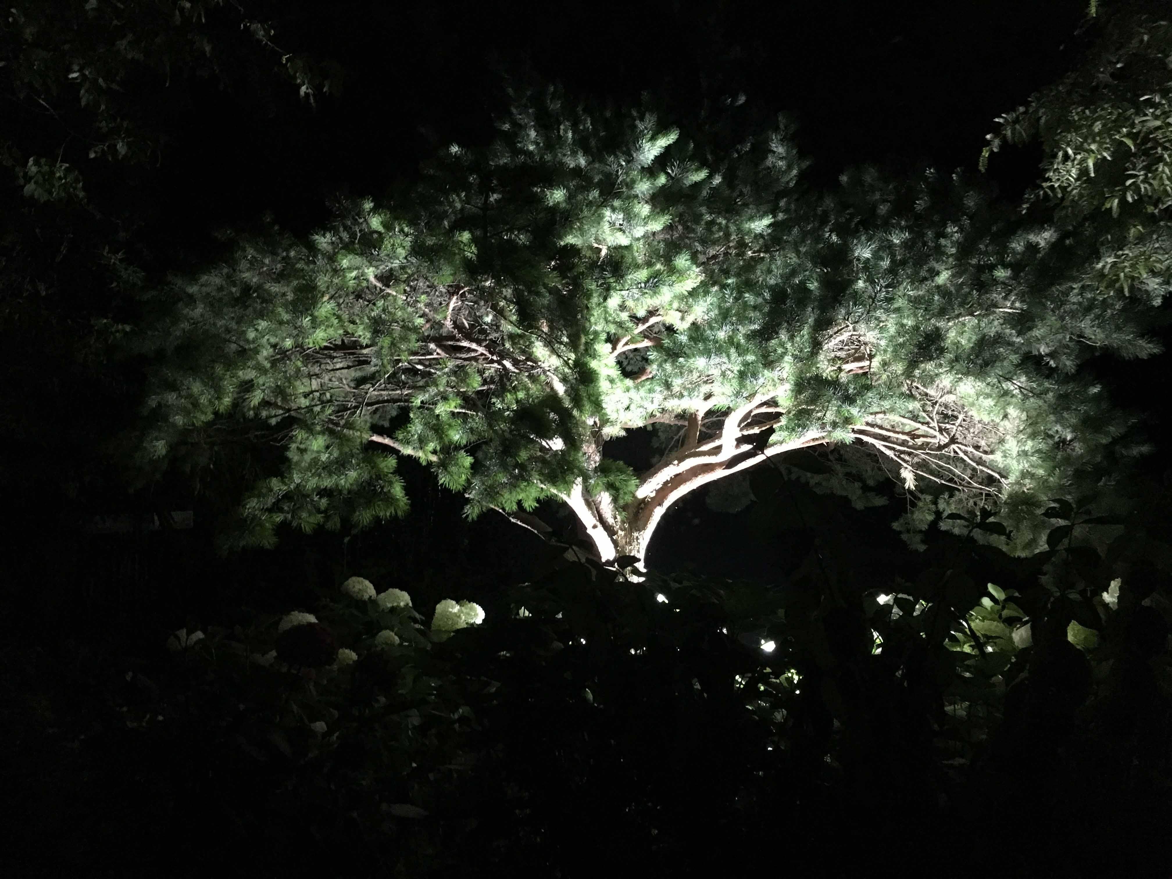 Studio delle ombre - Come lavoriamo