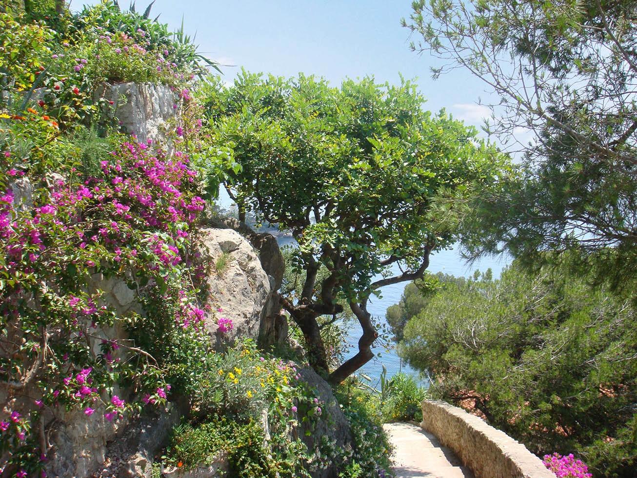 قمة على البحر - الحدائق