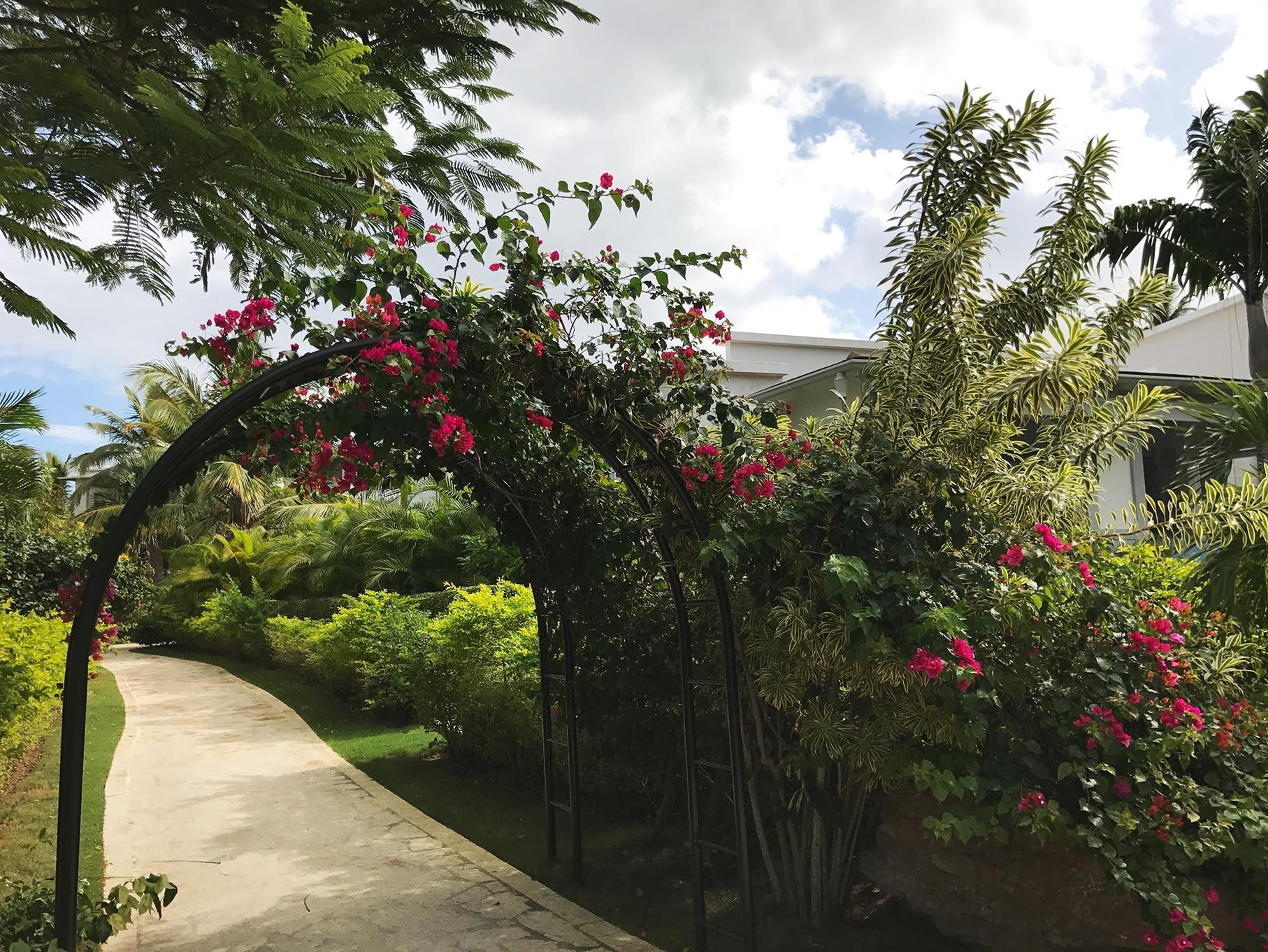 Il tepore invernale di Santo Domingo - News & Events