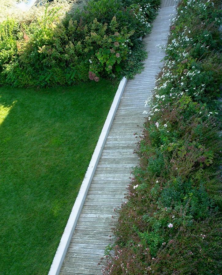 باغی که در پشت بام بانکی متولد شده - تراس ها