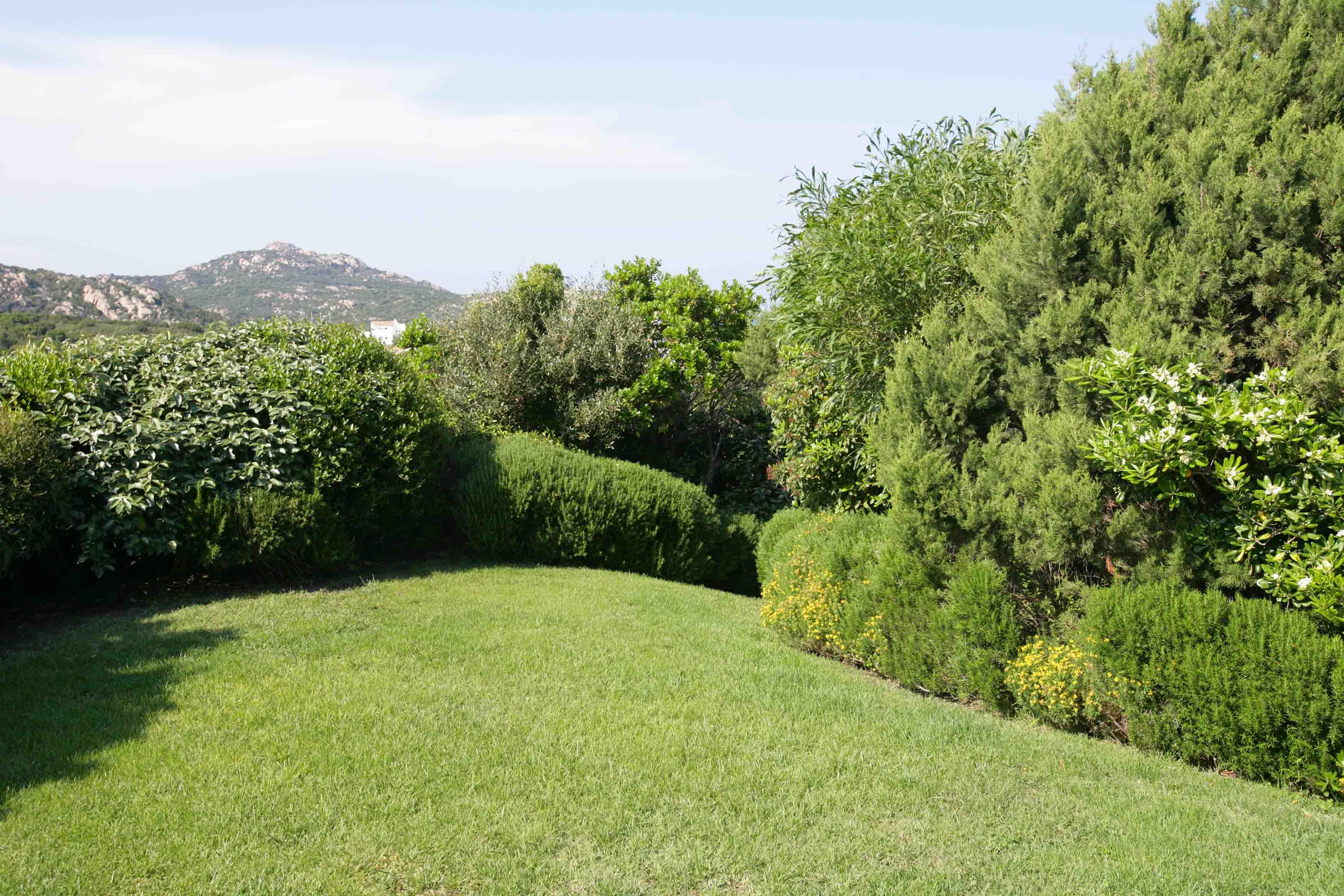 A beautiful garden in Sardinia - باغ ها
