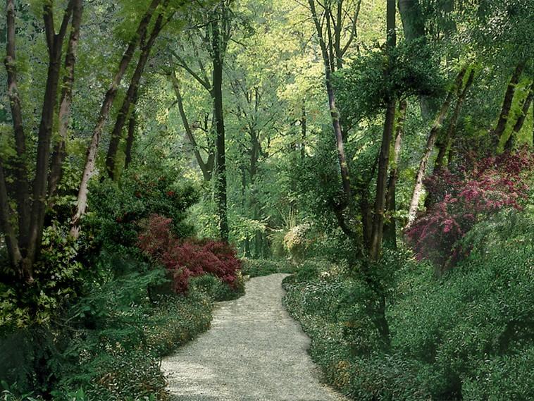Assisi gardens - فضاهای عمومی و شهربازی ها