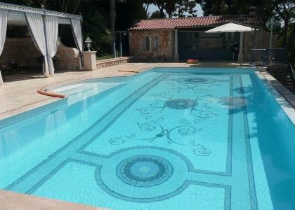 Swimming pool overlooking the garden