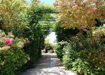 Vegetal rooms
