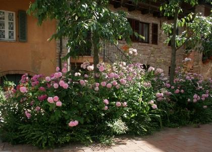 Hotel Relais il Borgo - Asti