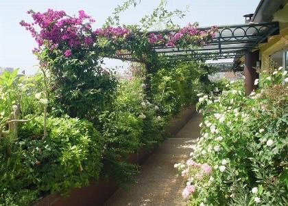 Progettazione terrazze paghera realizzazione terrazze for Mobili per terrazzi e giardini