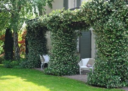 Progettazione giardini paghera giardini unici for Paghera giardini